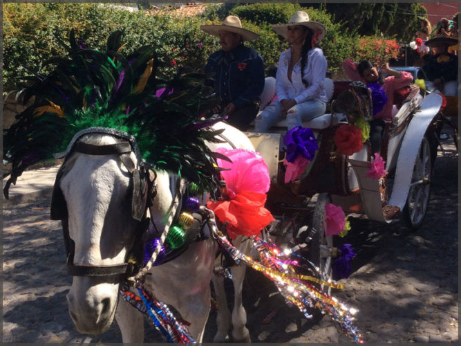 Horse decorate with feathers for the Ajijic, Mexico mardi gras parade.